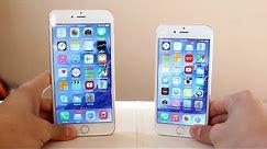 iPhone 6 vs iPhone 6 Plus Comparison