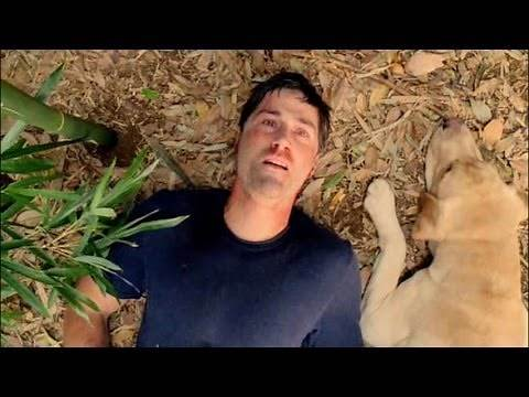 Top 10 Memorable TV Show Finales