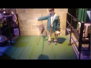 Harry Potter - Broomstick