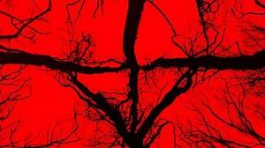 Blair Witch Teaser Trailer (2016)