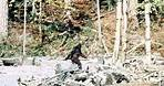Patterson-Gimlin Bigfoot Film analysis. 4K stabilised colour.