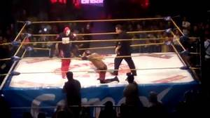 Mexican wrestler dies mid-match following stunt gone wrong, other wrestlers continue fight around lifeless