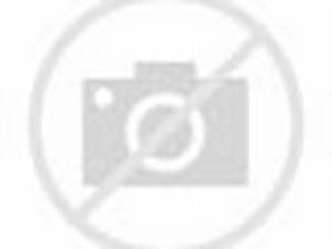 Awesome footage of wolverine and wolf fighting over dinner in National Park