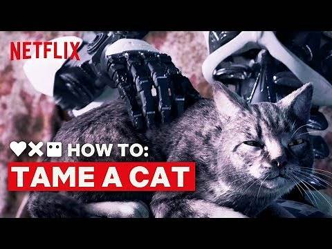 LOVE DEATH ROBOTS | How to Tame a Cat | Netflix