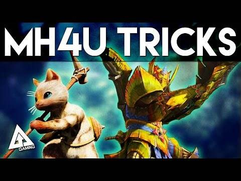 Monster Hunter 4 Ultimate Tips - 5 Things You Didn't Know