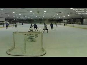 17 February 2017 - Game 18 - Angry Moose vs Avalanche