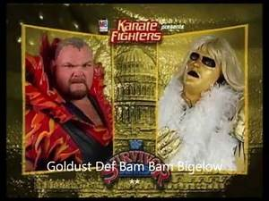 Survivor Series 1995 Review