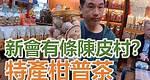 【灣區博士沈永年|疫行大灣區】新會有條陳皮村?|特產柑普茶