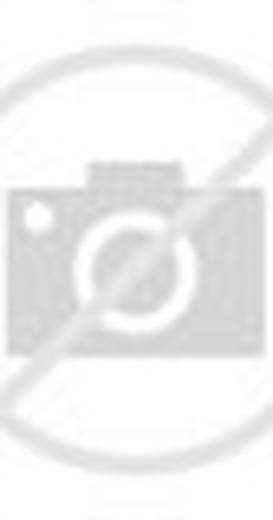 Bonanza (TV Series 1959–1973)