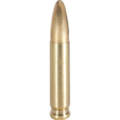 Online Gun Ammo Store