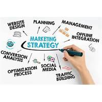 10 website business strategies free trial