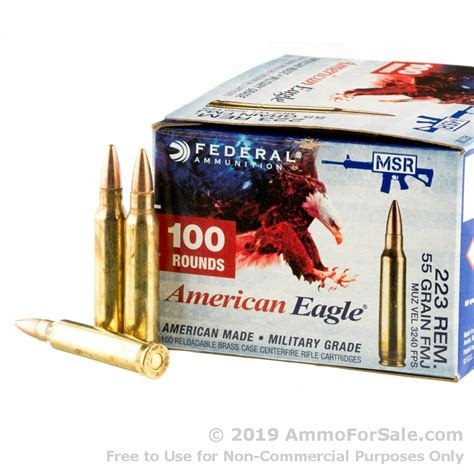 100 Rounds Of 223 Ammo For Sale