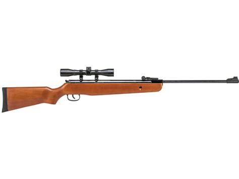 1101ws Air Rifle