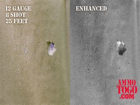12 Gauge Shotgun At 21 Ft Spread
