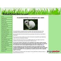 12 top ways to keep your rabbit healthy, well & contented promo