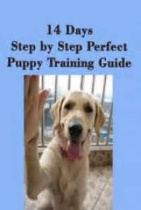 [pdf] 14 Days Step By Step Perfect Puppy Training Guide.