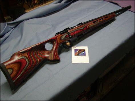 17 Hmr Rifle With Thumbhole Stock