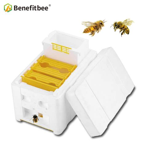 17643 Beekeeping Beehive Box Harvest Beehive Queen Mating Hive Benefitbee Item