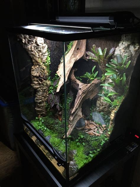 18x18x24 Crested Gecko Enclosure Rack Diy