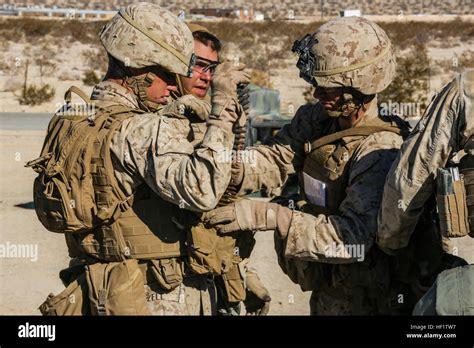 Bravo-Company 1st Battalion 5th Marines Bravo Company