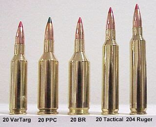 20 Caliber Cartridge Guide Within Accurateshooter Com.