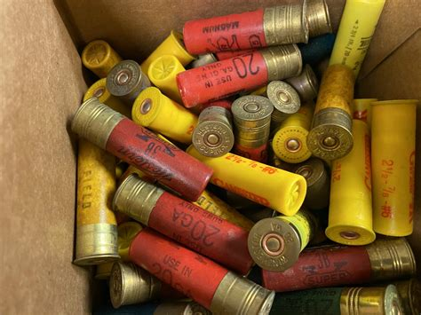 20 Gauge Shotgun Shells 100