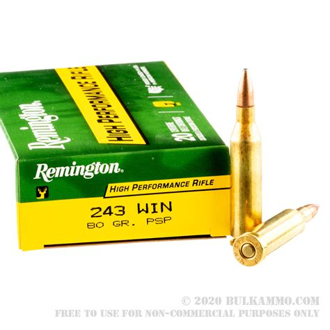 20 Rounds Of Bulk 243 Win Ammo By Winchester Ballistic And Ar15 M16 Front Sight Rail System Ar15 Front Sight Rail
