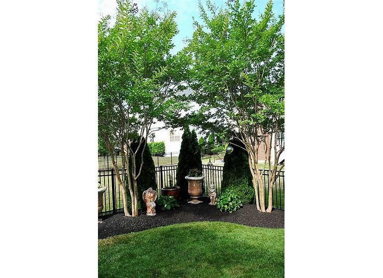 Backyard Garden Landscaping Network Wallpaper Ideas Japanese ... on patio small yard ideas, tuscan raised garden bed ideas, back yard english garden, rock garden ideas, back yard garden with pond, stone front steps design ideas, back yard garden plans, rock patio and walkway design ideas, landscape patio design ideas, low maintenance landscape design ideas, mediterranean house front yard design ideas, narrow pergola design ideas, front yard ground cover ideas, garden path with pavers ideas, houzz landscape design ideas, diy garden path walkway ideas, landscaping ideas, circular driveway landscape design ideas, small landscape design ideas, half covered balcony design ideas,