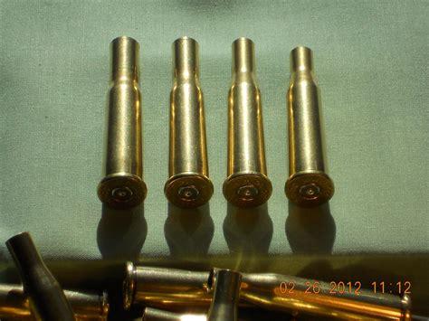 219 Wasp Ammo