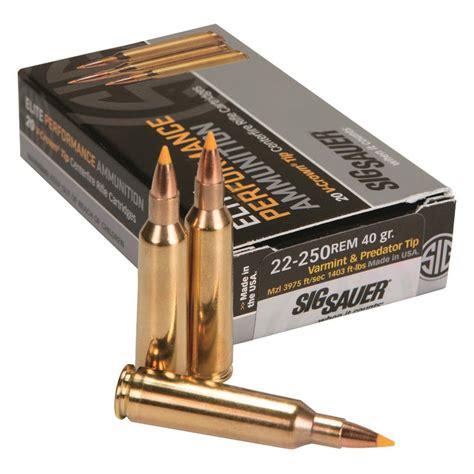 22 250 Ammo