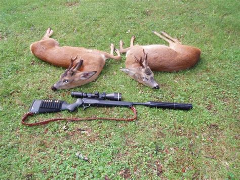 22 250 Rifle For Deer Hunting
