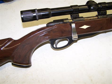 22 Remington Rifle Bolt Action And Ruger 22 Semi Automatic Rifle