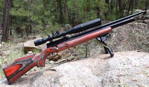 22 Air Rifle Hunting Deer