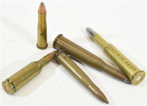22 Ammo Different Types