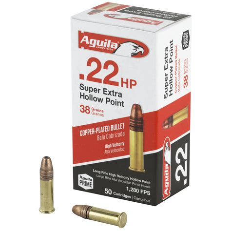 22 Ammo Pointed