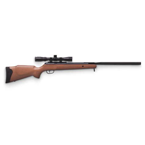 22 Caliber Air Rifle Hunting
