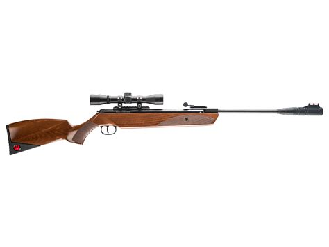 22 Caliber Air Rifle With Scope