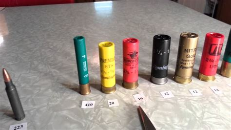 22 Gauge Shotgun Shell