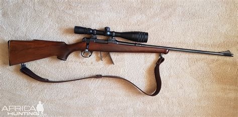 22 Hornet Hunting Rifle