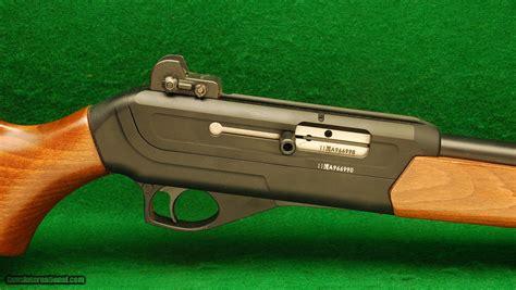 22 Magnum Automatic Rifle