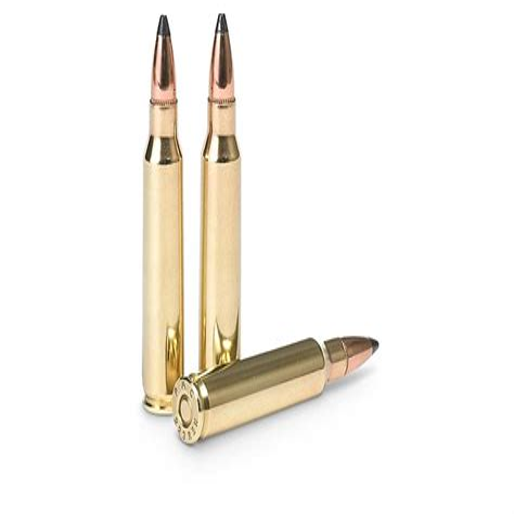 223 Ammo Gun Show