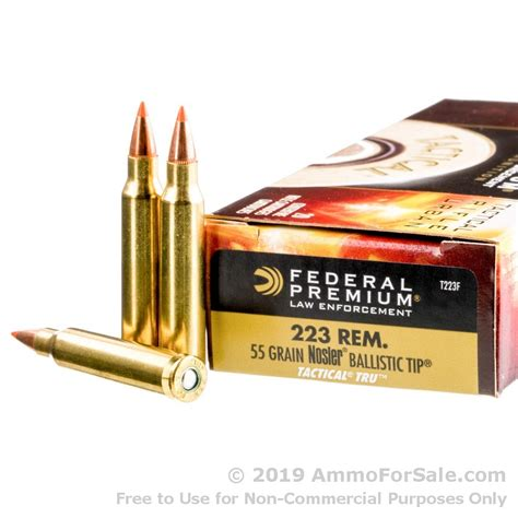 223 Ballistic Tip Ammo Review