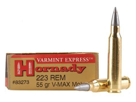 223 Hornady VMAX 55 Gr Varmint Express At 200 And 300 Yards