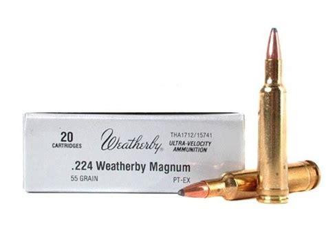 224 Wby Mag Ammo