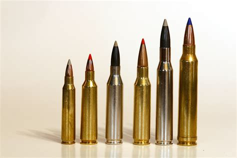 22lr Ammo For Deer Hunting