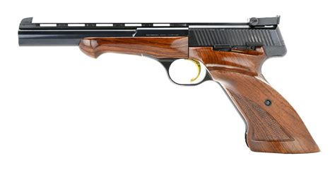 22lr Magnum Rifle