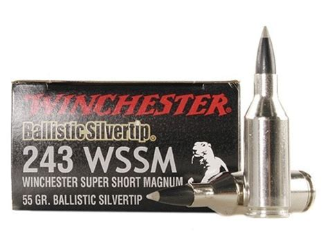 243 Winchester Short Mag Ammo And 26 N0sler Ammo