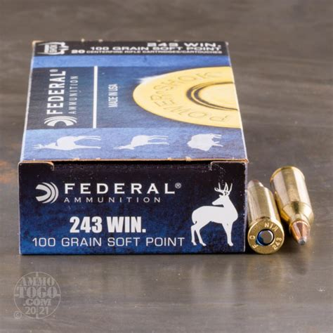 243 Ammo For Sale South Africa