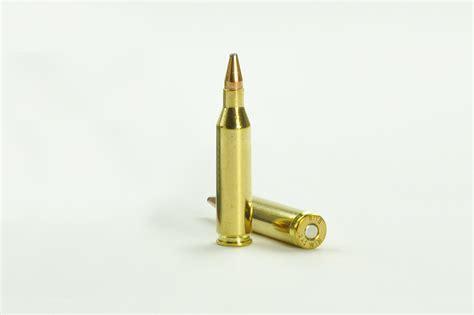 243 Caliber Rifle Ammo