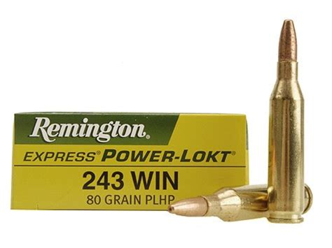 243 Hollow Point Ammo